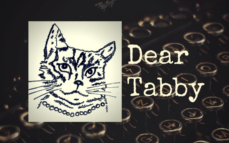 Dear Tabby…