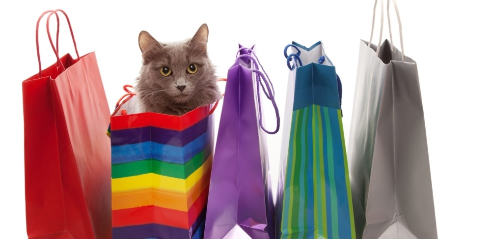 Support Purrfect Pals Cats While You Shop!